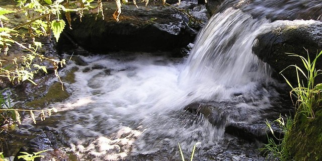 Naturpark Spessart erleben
